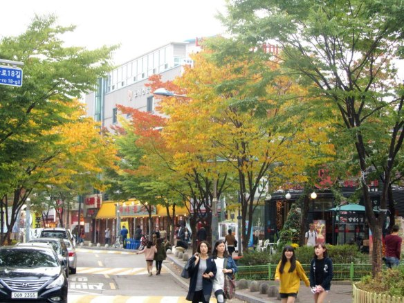 Hongdae's Autumn Foliage