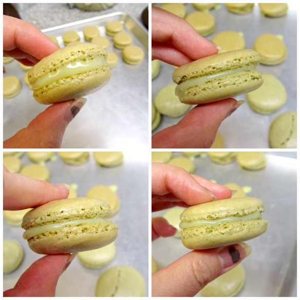 Macaron Set